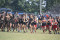 Cross Country Teams Move On To Regionals