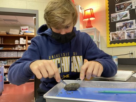 Senior Jaden Parker dissects an owl pellet in AP Environmental Science.