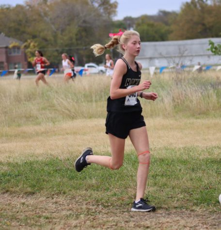 Emma Henard advances to state